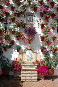 lugares con encanto, para conocer, para viajar, para salir, turismo andaluz, andalucía, visitar, viajar, Córdoba, fiesta de los patios de Córdoba, artículo, Mezquita, su barrio judío con la sinagoga, el puente romano, los molinos de agua, las plazas y callejas, los palacios y conventos, los baños árabes, las tabernas, bares, paredes encaladas cubiertas de macetas de geranios, jazmines, claveles y azahares, flamenco auténtico, tapas cordobesas, copas con Moriles-Montilla, árabes, Festival de Patios, tradición declarada Patrimonio Inmaterial de la Humanidad por la UNESCO desde 2012, concurso de patios, Casco Histórico, macetas de coloridas flores, gastronomía cordobesa, vino, comida, rabo de toro, los flamenquines de jamón serrano, el salmorejo, los boquerones en vinagre y el pastel cordobés, oferta culinaria, comida mediterránea, comida árabe, maridaje, maridaje gourmet, maridaje gourmet y más