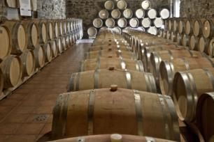 Maridaje Gourmet y Mas, gourmet, Maridaje, foodies,beber vino,bodegas,cata de vinos, catas de vinos, evento, muestra de vinos del Bierzo,catar vinos del Bierzo,uvas del Bierzo,vino tinto, vino blanco,viñedos, viñedos de el Bercio,Bodegas de el Bierzo,bodegas en el Bierzo,Comarca del Bierzo, Denominacion de Origen vinos del Bierzo,Godello del Bierzo, Mencia del Bierzo, Vino tinto d.o. el Bierzo, vino blanco d.o. El Bierzo,El Bierzo, D.O. Bierzo,vino, vinos del Bierzo,Godello, Mencia, Garnacha tintorera, Vino, godello, vino mencia, vino garnacha tintorera,uvas Godello, uvas Mencia,