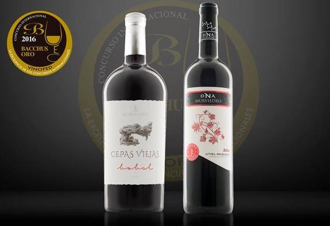 Alcohol, Beber vino,Beber,Bodega,Bodegas,cata,Cata de Vino,Catas de Vinos,Nota de cata,uva,vino tinto, vinos tintos de Valencia, vinos tintos,viñedos,viñedos en Valencia, viñedos en Utiel-Requena,Maridaje Gourmet y Mas, Maridaje, Maridaje Gourmet, Bodegas Mulviedro,Syrah, Cueva del Perdón,Vino Cueva del Perdon,DNA Alma Mística,Vino Dna Alma Mistica,OIV,Organización Internacional de la Viña y el Vino,UEC,Unión Española de Catadores,Vinofed,Federación Mundial de Grandes Concursos de Vinos y Espirituosos ,Murviedro Cepas Viejas,Cepas Viejas, Vino Cepas Viejas, DOP Valencia, Jardín del Turia de Valencia,Bacchus,Premios Bacchus,Bobal, Muscat ,Monastrell,XXVIII Mostra de Vins, Caves i Licors,Mulviedro,vino, vino Dna Classic Bobal,Bacchus de Oro,DOP Utiel-Requena,vinos de Valencia, Proava, Proava 2016,