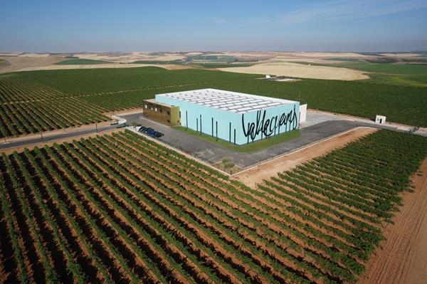 viñedo, viñedos en Rueda, uva verdejo,beber vino, beber,bodegas,bodegas en Rueda,catas,Vinos crianza sobre lias, Nota de cata verdejo, nota de cata vino verdejo,Valdecuevas verdejo fermentado en barrica,Diwine,Flor Innata,Valdecuevas Verdejo,Vino, vino blanco, vino verdejo,verdejo,comprar verdejo, comprar vino verdejo, D.O. Verdejo, vino de Rueda,Valdecuevas, bodega Valdecuevas Rueda, La Seca,D.O. Rueda,Ruta vinos de Rueda,comprar vino,mundo del vino,foodies,Maridaje Gourmet y Mas,Gourmet, Maridaje, Maridaje Gourmet,viñas, en Rueda,