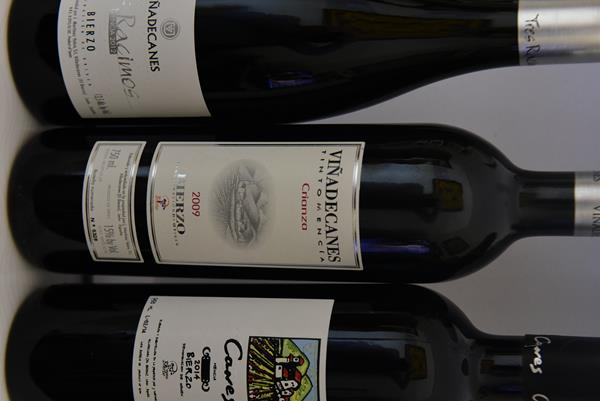 beber vino, vino tinto, vino blanco,El Bierzo,Vinos del Bierzo, bodegas del Bierzo, uva, godello, uva mencia, Mencia, Godello, D.O. Bierzo,Bodegas Martinez Yebra, vinos de calidad el mundo del vino,