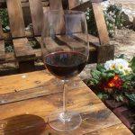 Los 100 mejores vinos de España y Portugal, bodegas de la Península Ibérica,Asociación Vinduero-Vindouro,los mejores vinos de España y Portugal.Premios Vinduero-Vindouro,alcohol, beber vino, beber, bebida alcoholica, bodega, bodegas, cata de vino, Catar vinos, catas, Chardonnay, comprar vino, conocer vinos, crianza de vinos, donde comprar vino, el mundo del vino, enólogos, enoturismo, foodies, garnacha, gourmet, maridaje gourmet y mas, maridaje gourmet, maridaje, Mejores vinos, mundo del vino, nota de cata, nota de catas, sumiller, sumilleres, Tempranillo, uva garnacha, uva tempranillo Uva Viura, uva, uvas, vino blanco, vino ecologico, Vino Rosado, Vino tempranillo, vino tinto, vino, vinos buenos, Vinos ecologicos, vinos, Viñas, viñedo, viñedos, Viura,