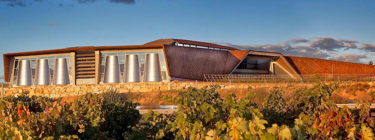 Portia Verdejo 2017,Ribera del Duero,Grupo Faustino,Bodegas Portia,bodegas, Ruta vinos, Uva, Vinos crianza sobre lias alcohol, beber vino, beber, bebida alcoholica, bodega, Bodegas en Rueda, bodegas, cata de vino, Catar vinos, catas, D.O.Rueda, comprar vino , conocer vinos, crianza de vinos, donde comprar vino, el mundo del vino, enólogo, enólogos, enoturismo, Etiquetas de vinos, evento gastronómico, evento, foodies, Rueda, gourmet, maridaje gourmet y mas, maridaje gourmet, maridaje, Mejores vinos, mundo del vino, nota de cata, sumiller, sumilleres, uva, uvas, vino blanco , vino bueno, vino ecologico, Verdejo, vino, vinos buenos, vinos de calidad, Vinos de crianza, Uva Verdejo, Vinos ecologicos, vinos, viñas, viñedo,